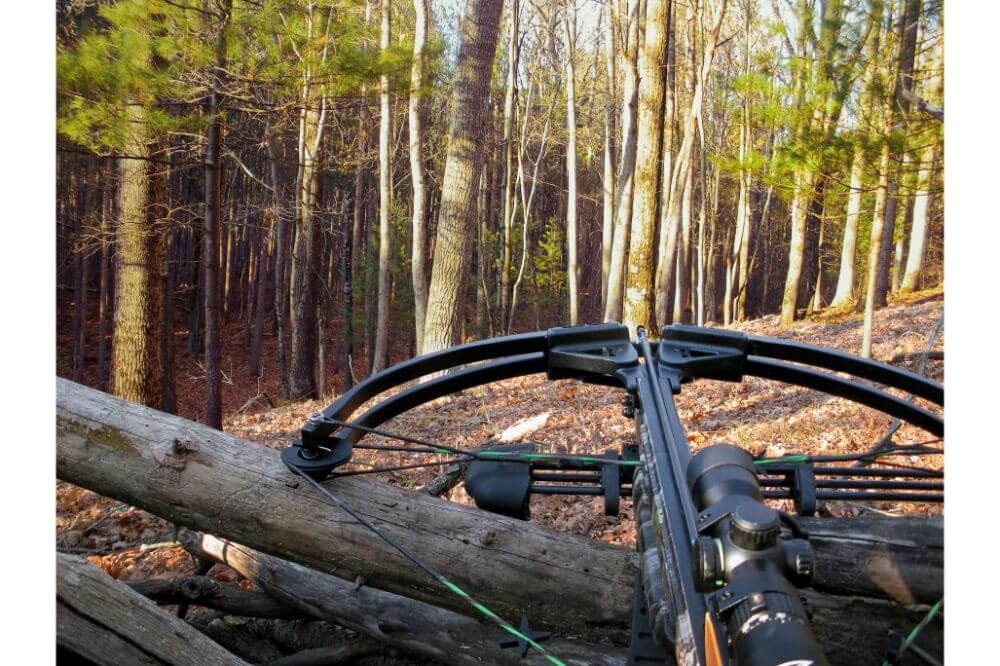 How Far Can You Shoot A Deer With A Crossbow