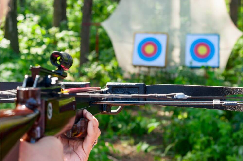 What Are the Two Most Common Types of Crossbows